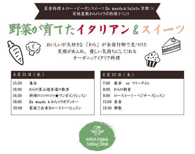 damaeda_web.jpg